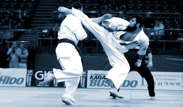karate kyokushin nocaute ko